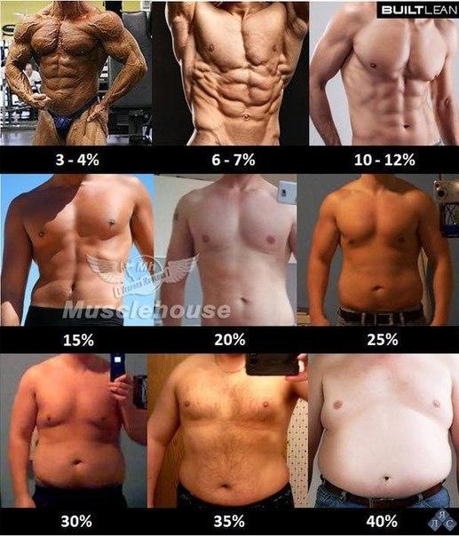 body slim fast no bem estar